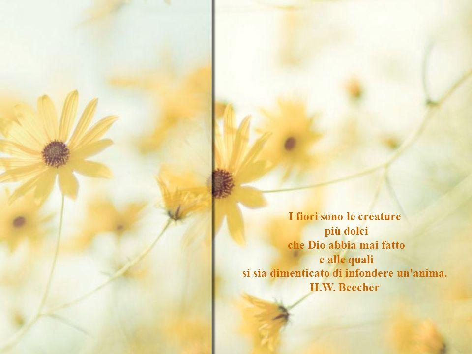 I fiori sono le creature si sia dimenticato di infondere un anima.