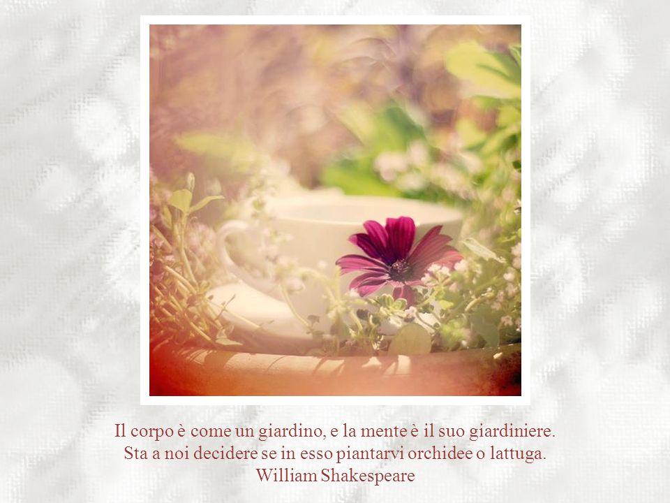 Il corpo è come un giardino, e la mente è il suo giardiniere.