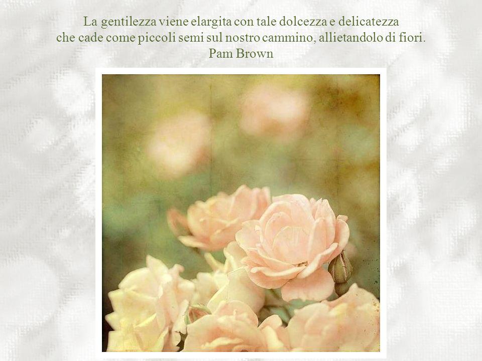 La gentilezza viene elargita con tale dolcezza e delicatezza che cade come piccoli semi sul nostro cammino, allietandolo di fiori.