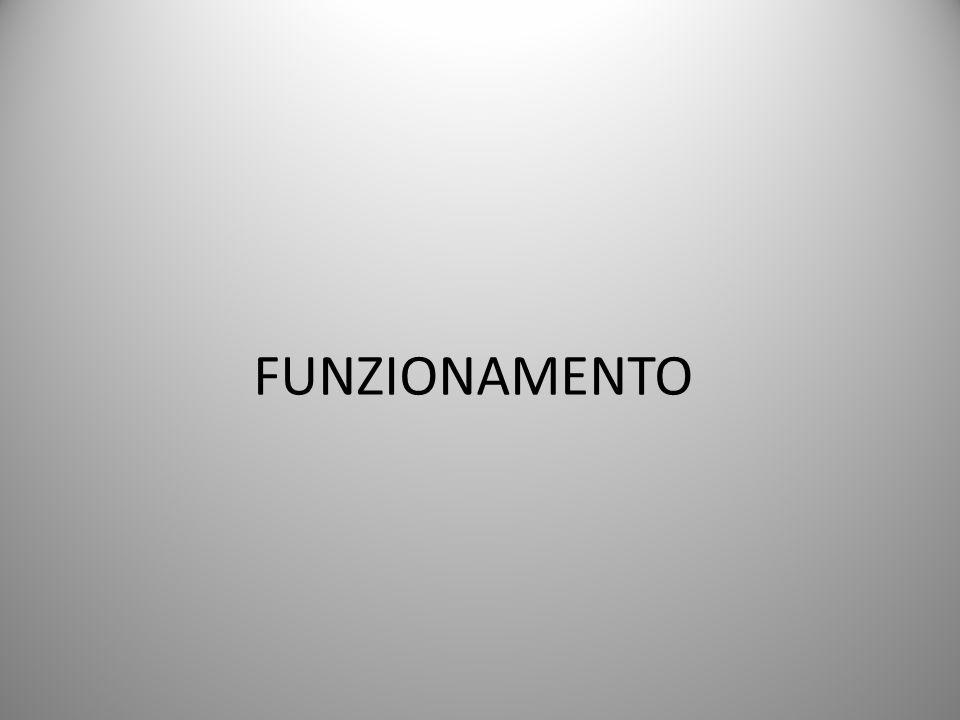 FUNZIONAMENTO