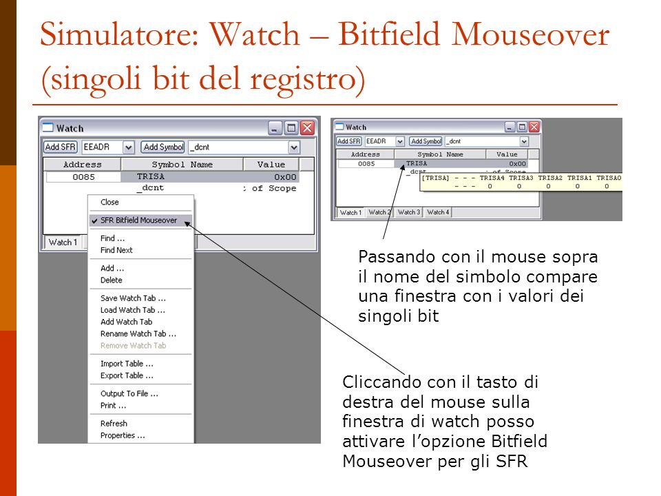 Simulatore: Watch – Bitfield Mouseover (singoli bit del registro)
