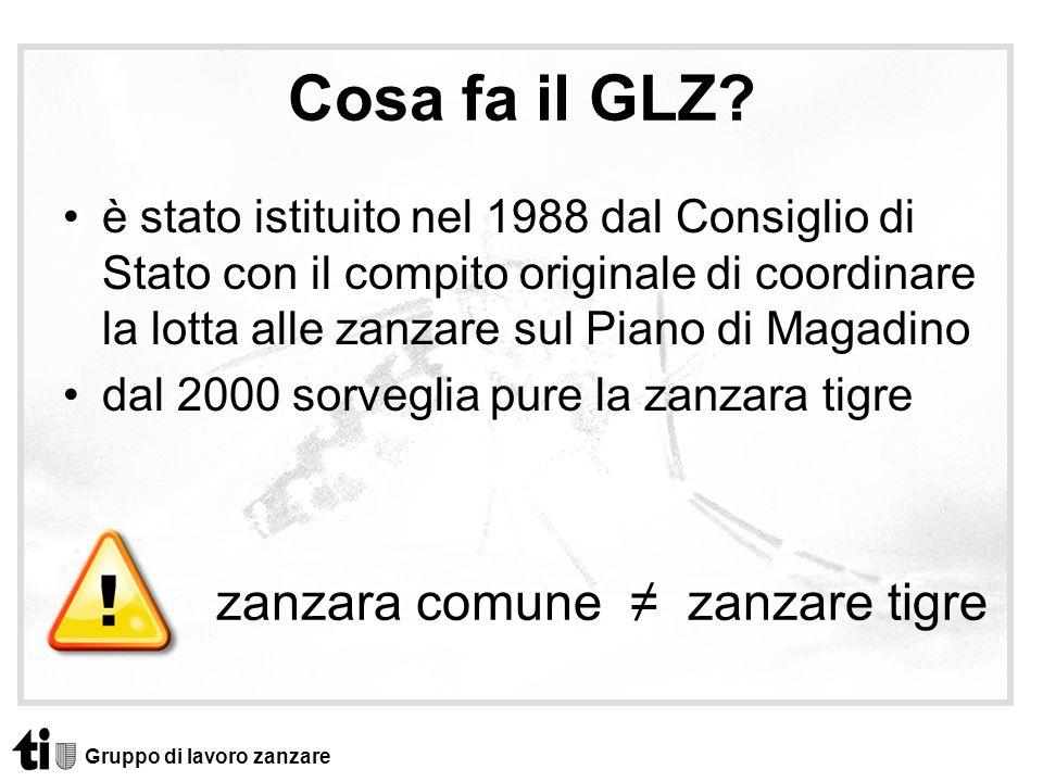 Cosa fa il GLZ zanzara comune ≠ zanzare tigre