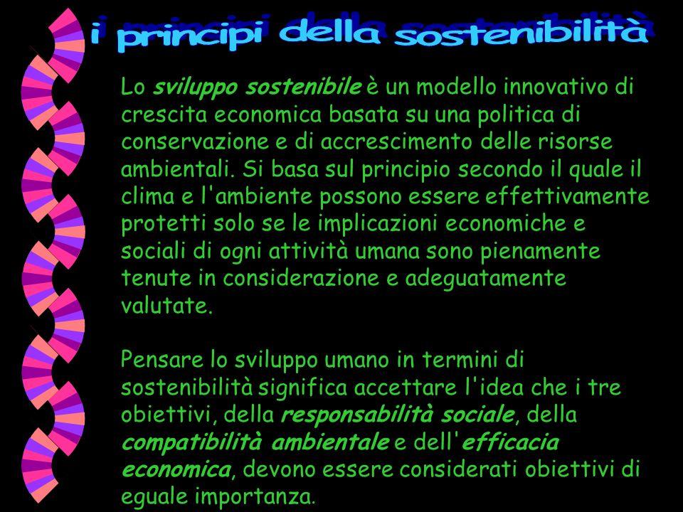 i principi della sostenibilità