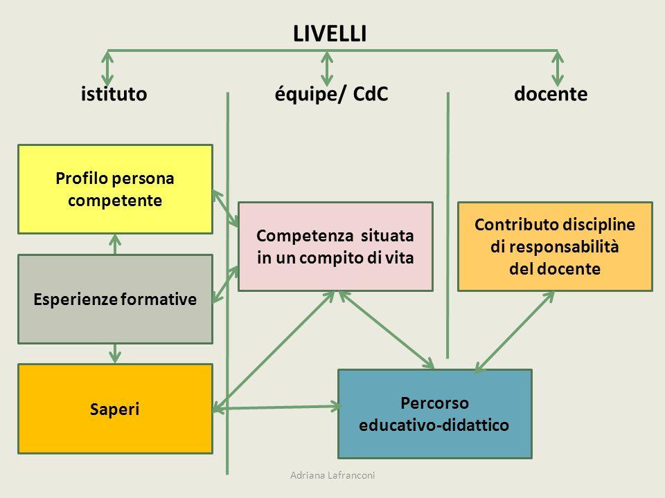 Profilo persona competente Contributo discipline