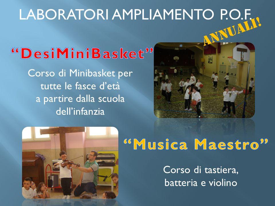 DesiMiniBasket Musica Maestro