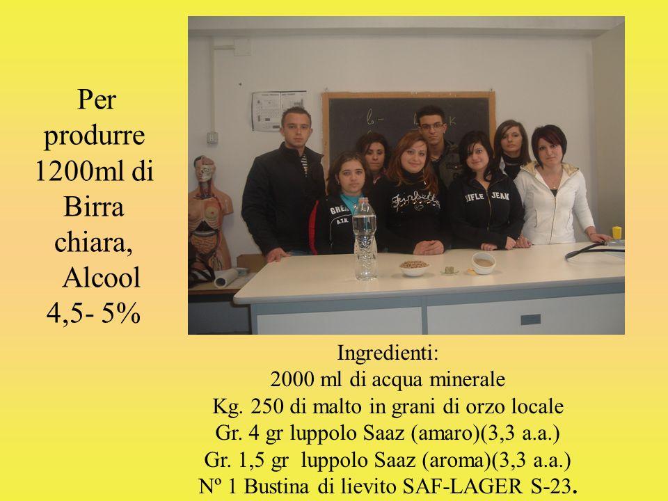Per produrre 1200ml di Birra chiara, Alcool 4,5- 5%
