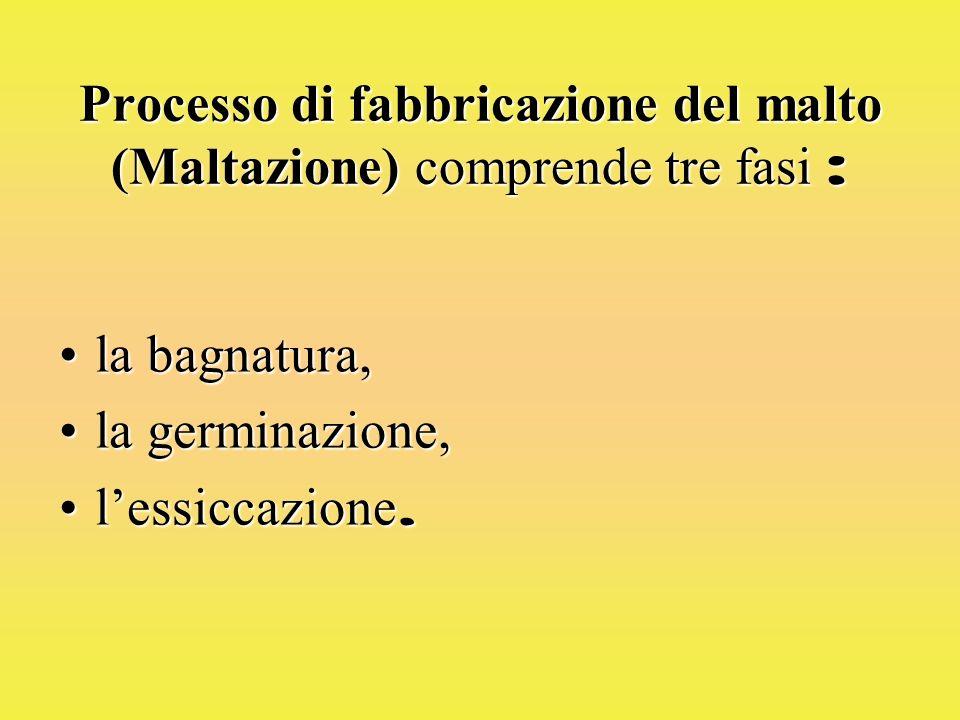 Processo di fabbricazione del malto (Maltazione) comprende tre fasi :
