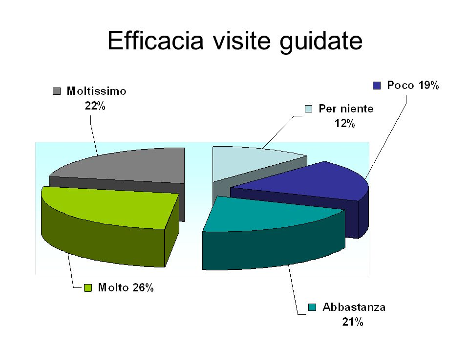 Efficacia visite guidate