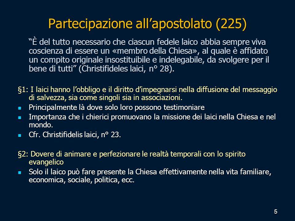 Partecipazione all'apostolato (225)