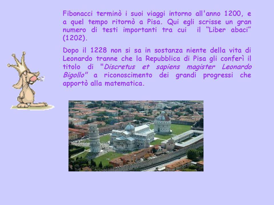 Fibonacci terminò i suoi viaggi intorno all anno 1200, e a quel tempo ritornò a Pisa. Qui egli scrisse un gran numero di testi importanti tra cui il Liber abaci (1202).