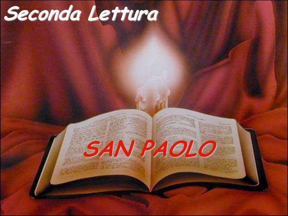 Seconda Lettura SAN PAOLO
