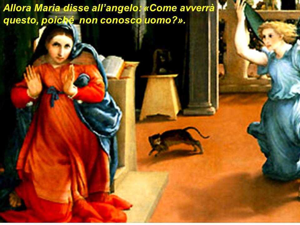 Allora Maria disse all'angelo: «Come avverrà questo, poiché non conosco uomo ».