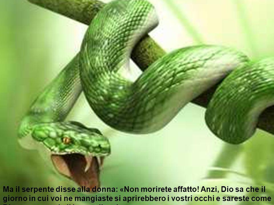 Ma il serpente disse alla donna: «Non morirete affatto