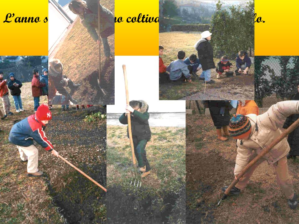 L'anno scorso abbiamo coltivato il nostro orticello.