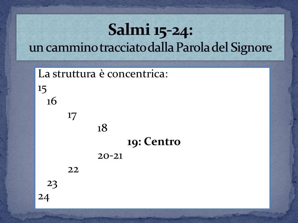 Salmi 15-24: un cammino tracciato dalla Parola del Signore