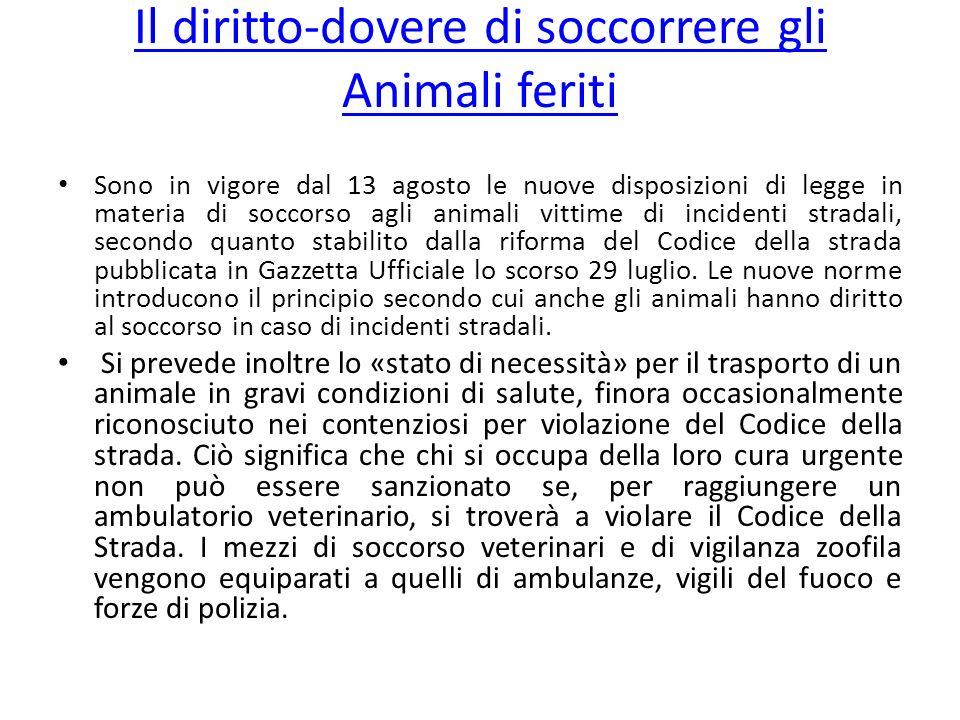 Il diritto-dovere di soccorrere gli Animali feriti