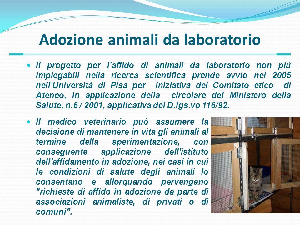 Adozione animali da laboratorio