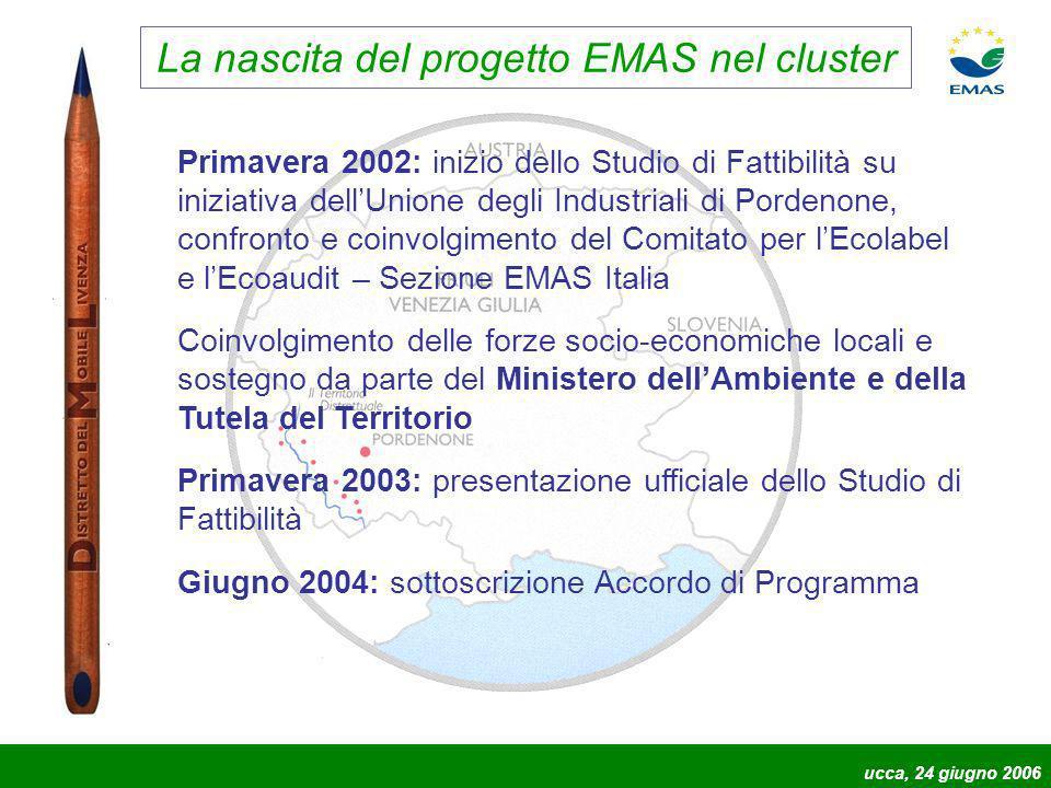 La nascita del progetto EMAS nel cluster