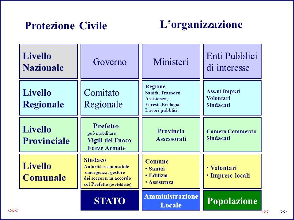 L'organizzazione Protezione Civile Livello Nazionale Governo Ministeri