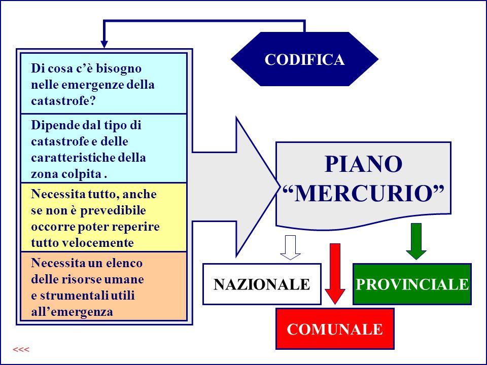 PIANO MERCURIO PIANO Mercurio CODIFICA NAZIONALE PROVINCIALE