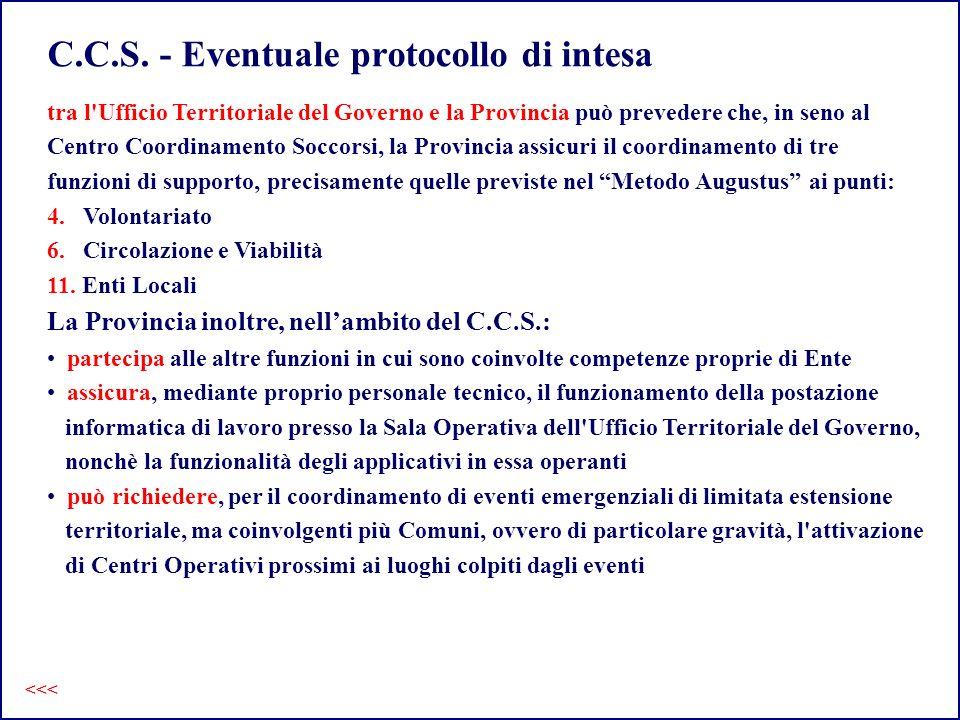 C.C.S. - Eventuale protocollo di intesa