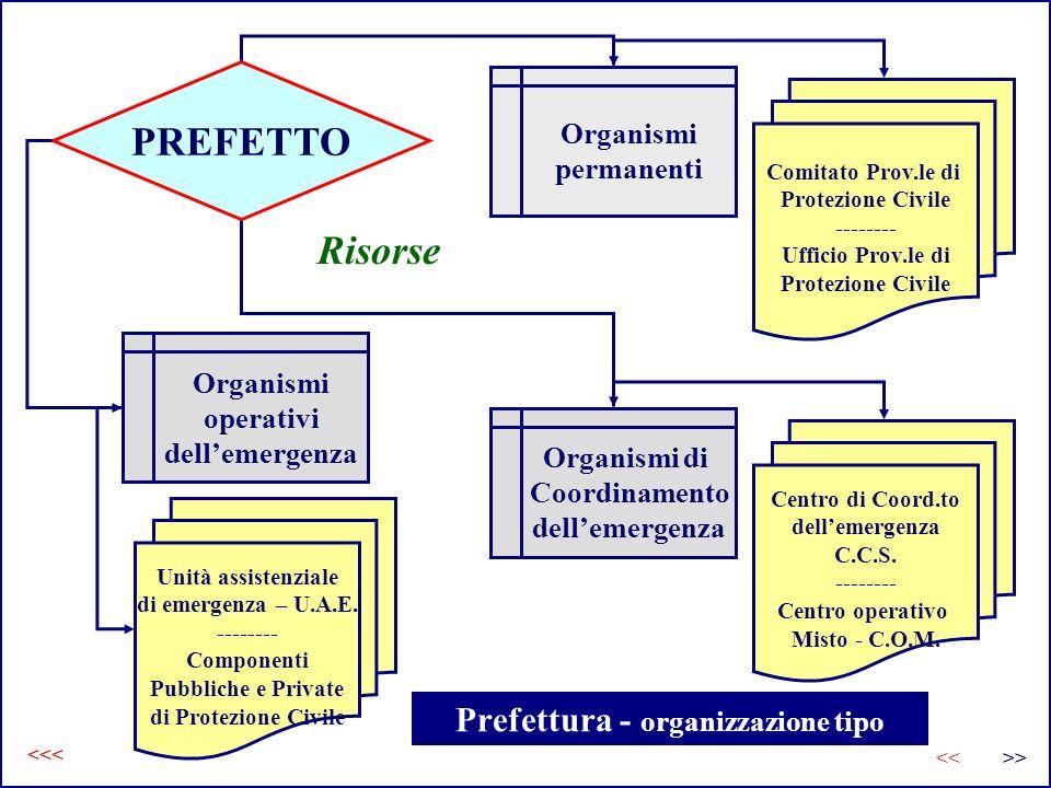 Prefettura - organizzazione tipo