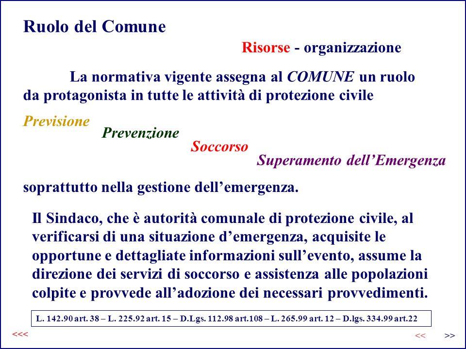 Ruolo del Comune Risorse - organizzazione