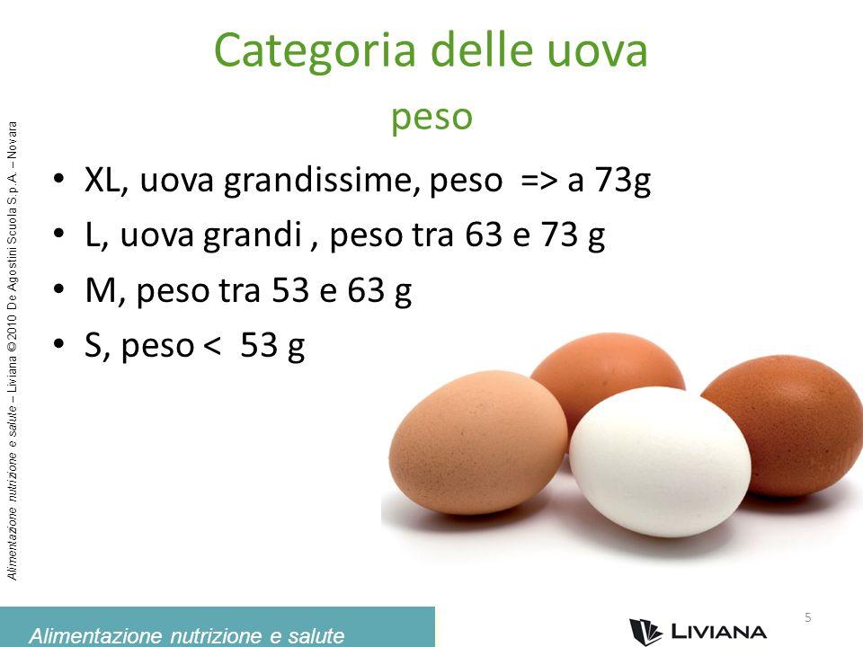 Categoria delle uova peso