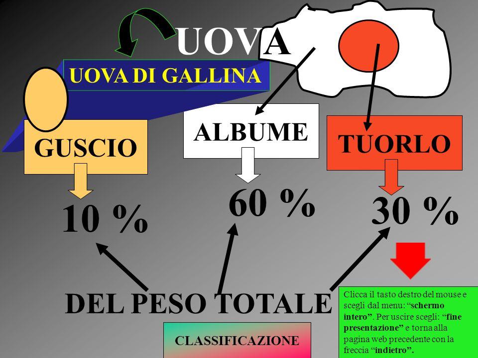 UOVA 60 % 30 % 10 % DEL PESO TOTALE ALBUME TUORLO GUSCIO
