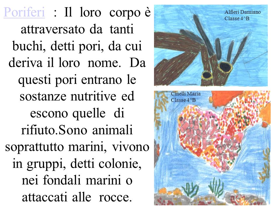 Alfieri Damiano Classe 4^B