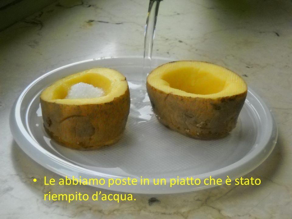 Le abbiamo poste in un piatto che è stato riempito d'acqua.