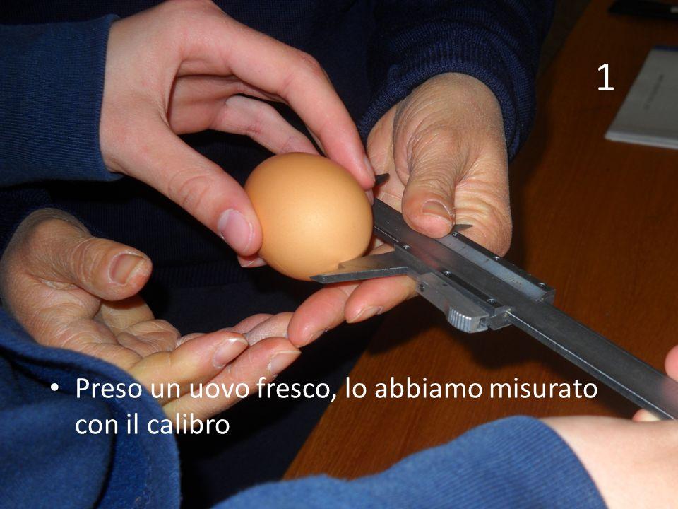 1 Preso un uovo fresco, lo abbiamo misurato con il calibro