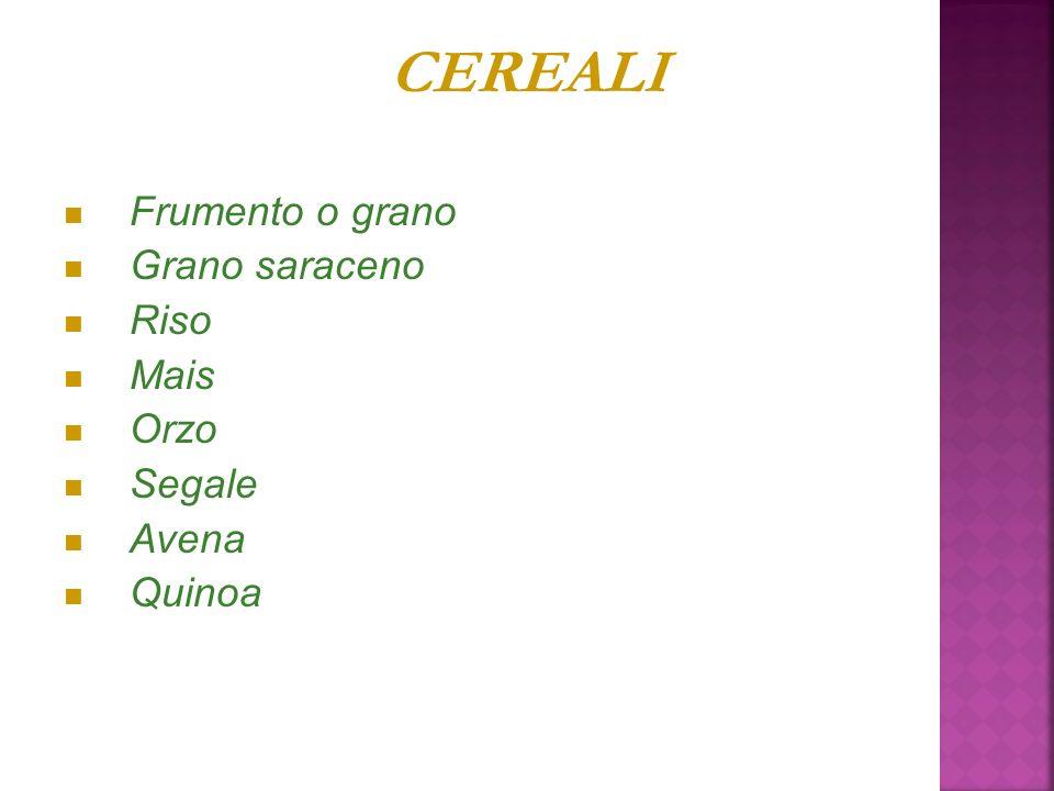 CEREALI Frumento o grano Grano saraceno Riso Mais Orzo Segale Avena