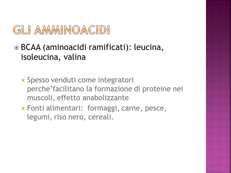 GLI AmMINOACIDI BCAA (aminoacidi ramificati): leucina, isoleucina, valina.