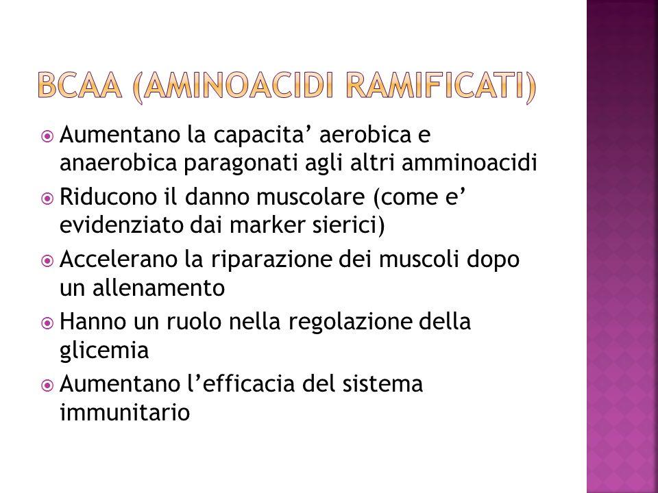 BCAA (aminoacidi ramificati)
