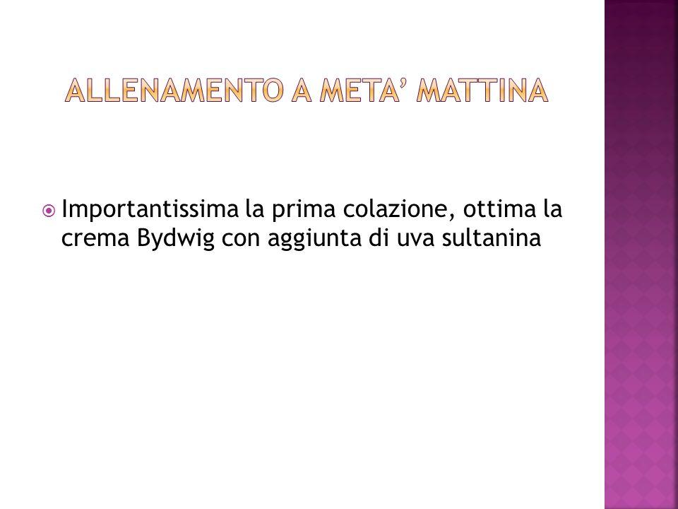 ALLENAMENTO A META' MATTINA