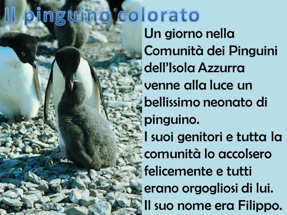 Il pinguino colorato Un giorno nella Comunità dei Pinguini dell'Isola Azzurra venne alla luce un bellissimo neonato di pinguino.
