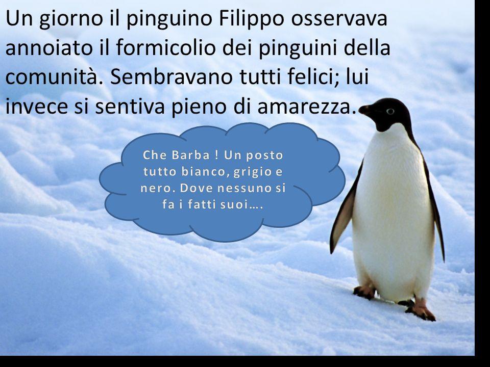 Un giorno il pinguino Filippo osservava annoiato il formicolio dei pinguini della comunità. Sembravano tutti felici; lui invece si sentiva pieno di amarezza.