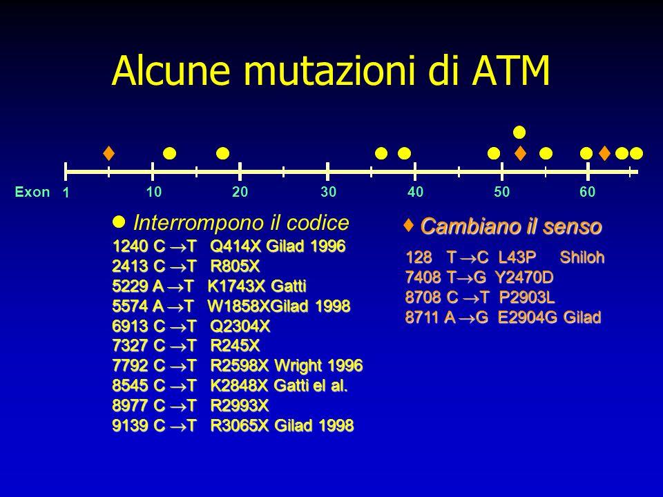 Alcune mutazioni di ATM