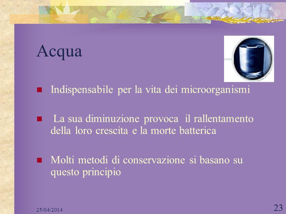 Acqua Indispensabile per la vita dei microorganismi
