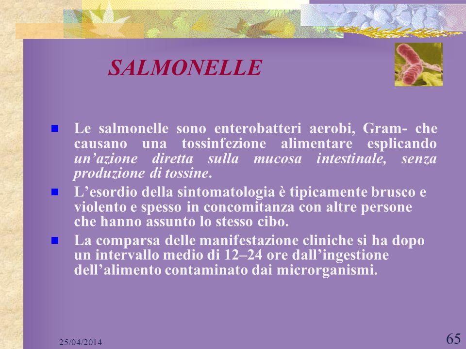 SALMONELLE