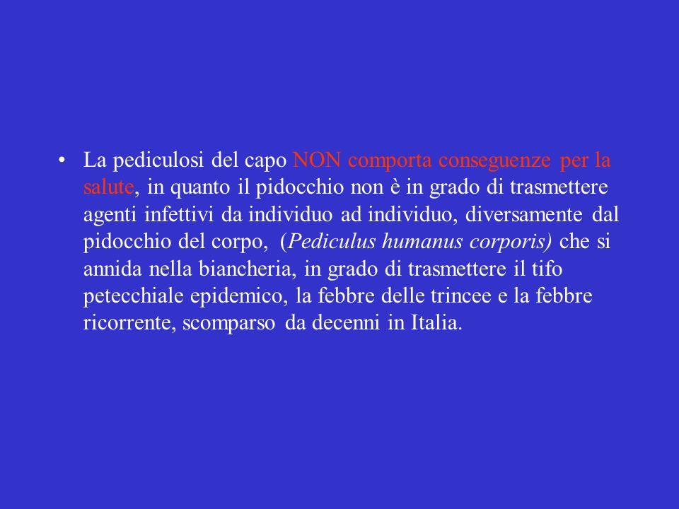 La pediculosi del capo NON comporta conseguenze per la salute, in quanto il pidocchio non è in grado di trasmettere agenti infettivi da individuo ad individuo, diversamente dal pidocchio del corpo, (Pediculus humanus corporis) che si annida nella biancheria, in grado di trasmettere il tifo petecchiale epidemico, la febbre delle trincee e la febbre ricorrente, scomparso da decenni in Italia.