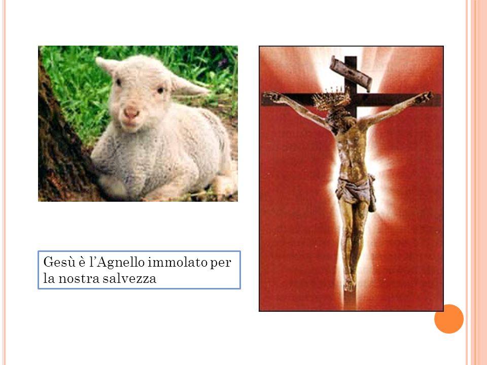 Gesù è l'Agnello immolato per la nostra salvezza