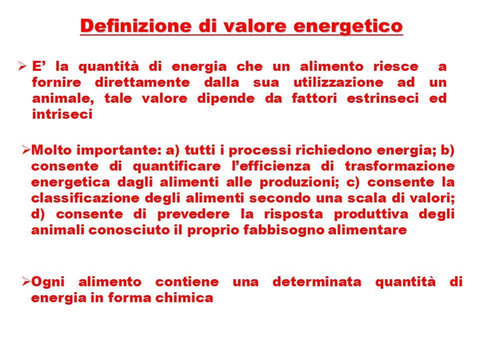 Definizione di valore energetico