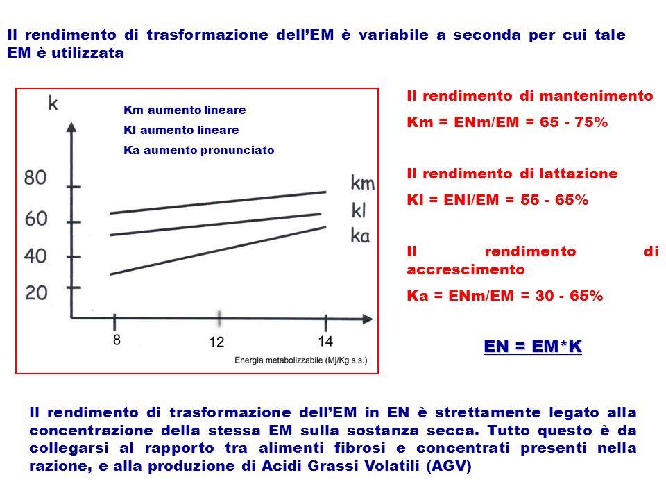Il rendimento di trasformazione dell'EM è variabile a seconda per cui tale EM è utilizzata