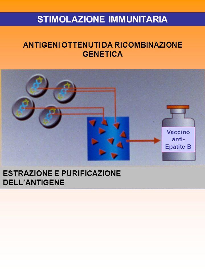 STIMOLAZIONE IMMUNITARIA ANTIGENI OTTENUTI DA RICOMBINAZIONE GENETICA