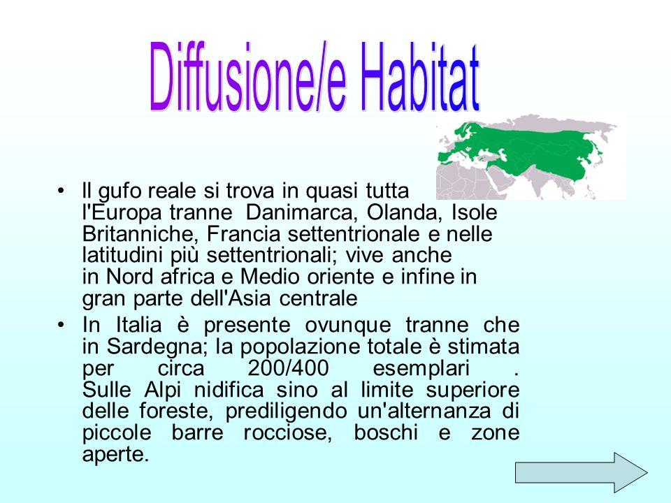 Diffusione/e Habitat