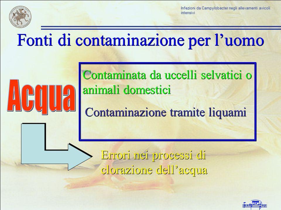 Fonti di contaminazione per l'uomo