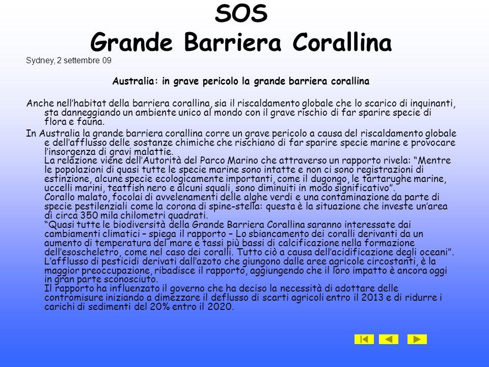 SOS Grande Barriera Corallina