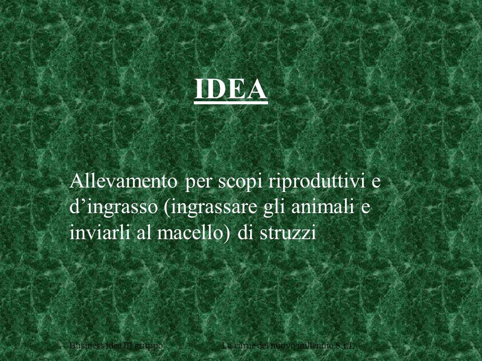 IDEA Allevamento per scopi riproduttivi e d'ingrasso (ingrassare gli animali e inviarli al macello) di struzzi.